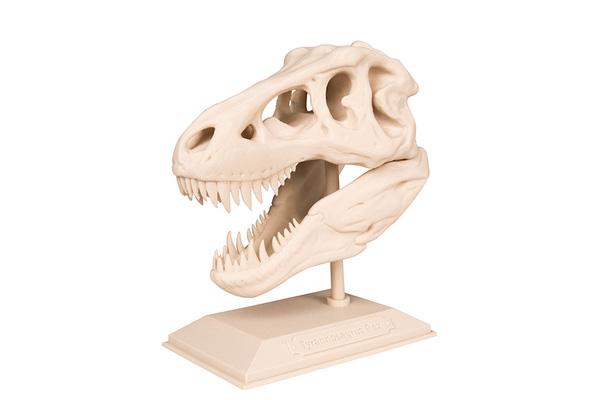 The T-Rex Skull 3d print 3dhub.gr