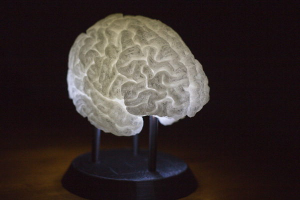 Human Brain 3d Print 3dhub.gr