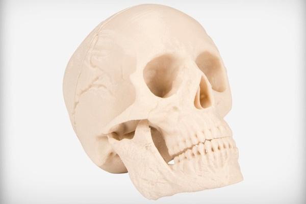 Skull 3d print 3dhub.gr